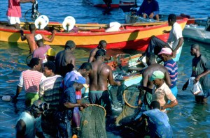 Fishermen gather their colorful boats off the coast of Gouyave, Grenada. (Credit: Larry Luxner)