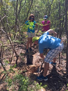 A group of Liberty employees help Para La Naturaleza on its mitigation plan against the negative effects iguanas have on the ecosystems of the Faro Las Cabezas de San Juan natural reserve in Fajardo.
