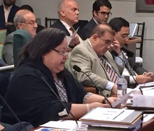 GDB President Melba Acosta testifies at budget hearings Monday. (Credit: House of Representatives)
