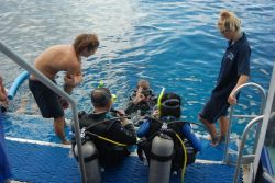 Outer Great Barrier Reef Scuba Dive and Snorkelling Tour from Cairns