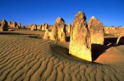 Pinnacles-Desert-Koalas-and-Sandboarding-4WD-Day-Tour-from-Perth-Australia