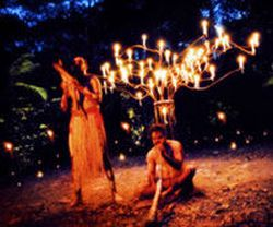 cairns-flames-of-the-forest-dining-experience-in-cairns