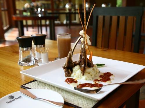 Fine Dining at Elephant Reach Hotel, Yala, Sri Lanka
