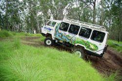 gold-coast-lamington-national-park-and-tamborine-mountain-4wd-eco-tour-in-gold-coast-australia
