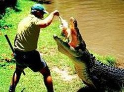 hartley-s-crocodile-adventure-half-day-tour-in-cairns
