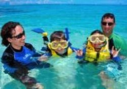 michaelmas-cay-dive-and-snorkel-cruise-from-cairns-in-cairns