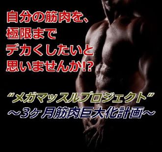 筋肉マッチョになる方法