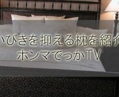 門倉貴史がいびきを抑える枕を紹介!キティちゃん以外のデザイン【ホンマでっかTV】