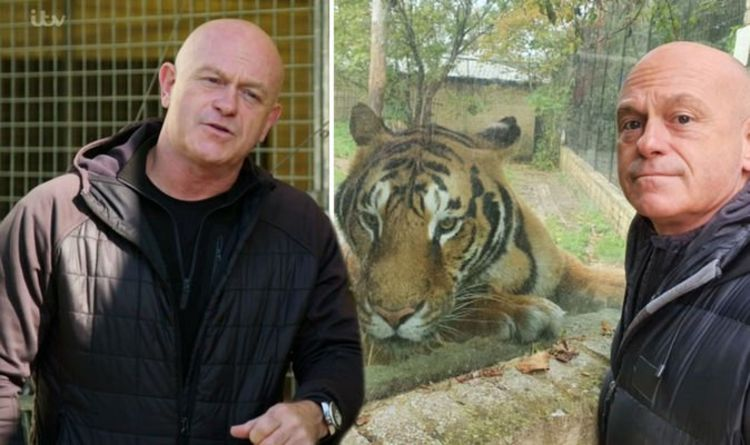 Ross Kemp says he's certainly not a hardman as he admits fear on controversial Tiger Kings