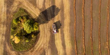 Russian agricultural exports surge as trade with China grows