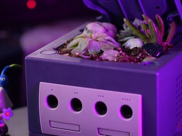 Random: Someone Turned A Nintendo GameCube Into A Flower Pot