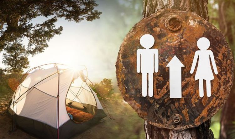 Camping and caravan holidays: England and Wales campsites open – are toilets available?