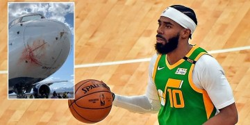 'It felt like an explosion': Utah Jazz stars say they feared for lives in emergency landing after plane struck flock of birds