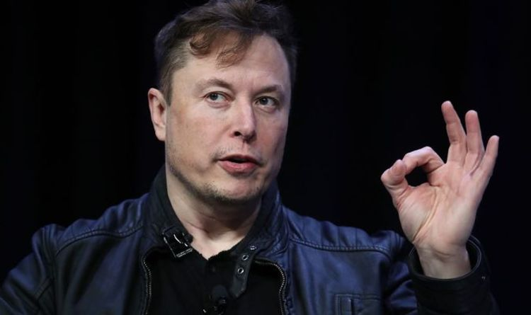 Dogecoin warning: Elon Musk rings alarm bells for crypto gamblers – 'invest with caution'