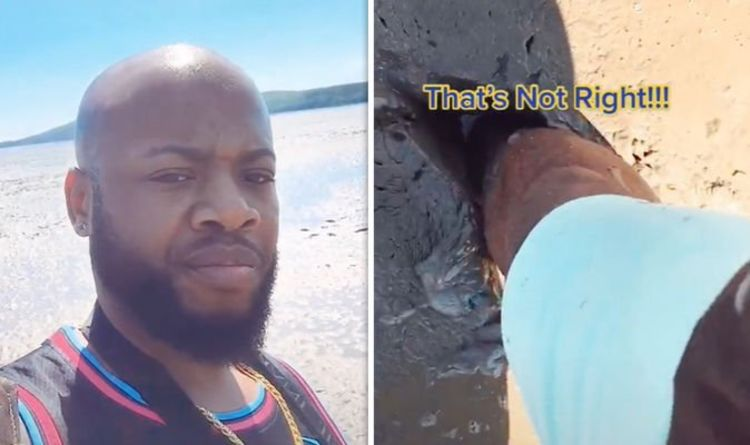 'What the hell is this!' - American Tiktok influencer horrified by Weston-super-Mare beach
