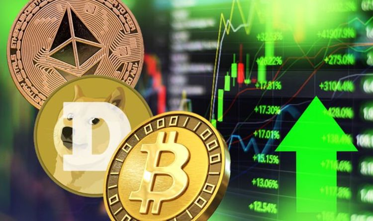 Cryptocurrency price LIVE: Bitcoin plummets as gains wiped - Musk's Dogecoin also drops