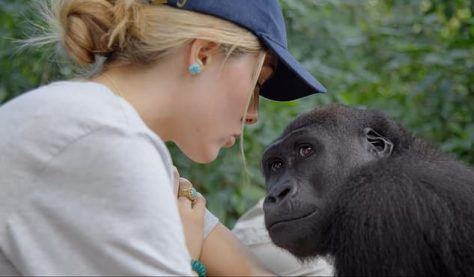 Freya Aspinall, whose conservationist father Damian has made her the star of his new documentary Freya & The Gorillas: An Incredible Rewilding Journey