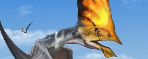 Police Raid in Brazil Saves The Most Detailed Pterosaur Fossil Discovered to Date