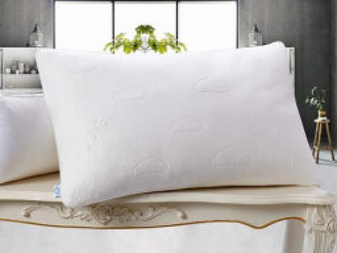 MODVEL Luxury Cool Memory Foam Pillow with Bamboo Cover (Queen) -- $21.99