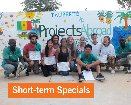Short-term Special Projects