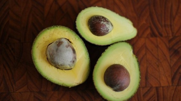 Avocado Seeds