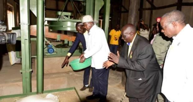 Museveni visited piggery