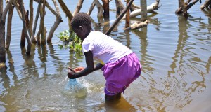 Climate Change effects on Uganda
