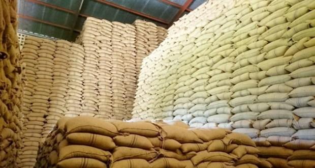 Kenya Bans Maize Imports From Her Neighbors Uganda & Tanzania