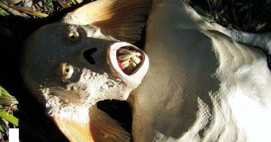 samie-ugasnie-mumii