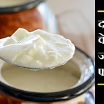 दही खाने के फायदे – भोजन को बनाए स्वादिष्ट और पौष्टिक