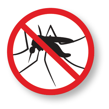 The Zika virus:  What we know and what we don't
