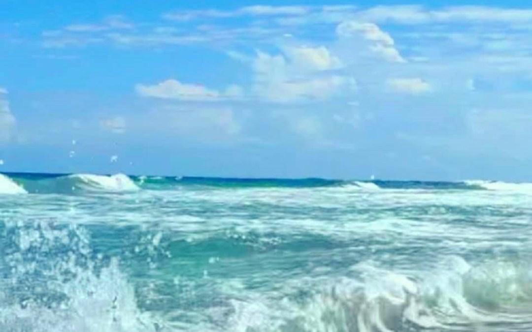 ☀Beach Paradise | Steps to the Ocean | Pool | Pet Friendly