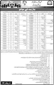 Shaheed Benazir Bhutto University Jobs