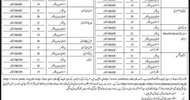 Shaheed Benazir Bhutto University Jobs