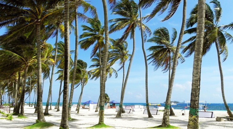 Sunny Trip to Miami 5 Valuable Tips for Travelers
