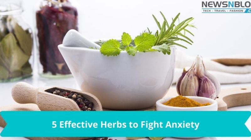 5 Effective Herbs to Fight Anxiety