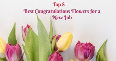 Top 8 Best Congratulations Flowers for a New Job