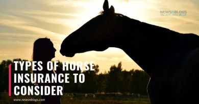Types of Horse Insurance To Consider