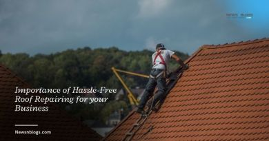Importance of Hassle-Free Roof Repairing for your Business