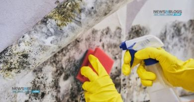 Ways To Keep Your Home Mold Free In The Summer