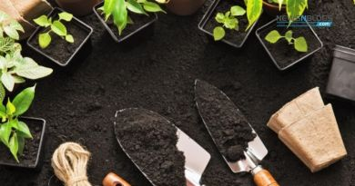 Benefits of using Organic Soil Conditioner
