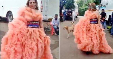 Viral Video: Street Dogs Chased Rakhi Sawant While Entering Bigg Boss House