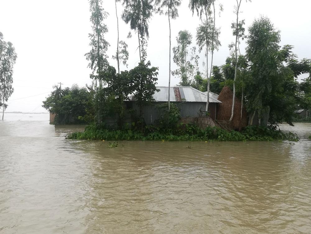টাঙ্গাইলে সব নদীর পানি বৃদ্ধি, অর্ধশত গ্রাম প্লাবিত