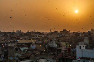 Kite Festival of Jaipur