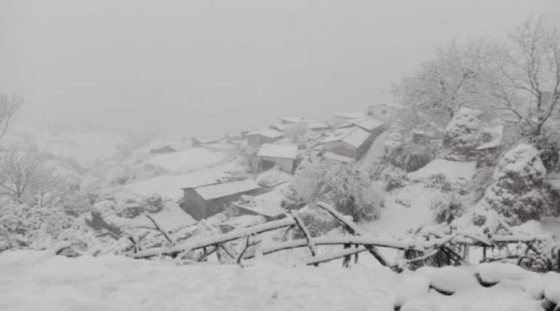 उत्तराखंड के पहाड़ी जिलों में कड़ाके की सर्दी जारी है। मौसम विभाग के मुताबिक, आने वाले 24 घंटे में चार पहाड़ी जिलों में बर्फबारी और बारिश हो सकती है।