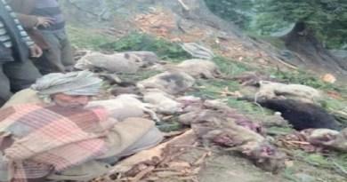 उत्तराखंड के पौड़ी गढ़वाल में कोरोना के बाद अब एक अज्ञात बीमारी का कहर शुरू हो गया है। सतपुली पोखड़ा ब्लॉक के पट्टी कोलागाड़ के चार गांवों में अज्ञात बीमारी से पिछले 15 दिनों में 56 बकरियों की मौत हो चुकी है।