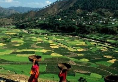 उत्तराखंड में बोरारौ घाटी के नाम से मशहूर, वर्तमान में सोमेश्वर एक ऐसी घाटी है जो कृषि के क्षेत्र में आज भी मशहूर है।
