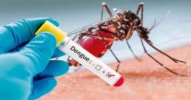 उत्तराखंड में कोरोना से मचे कोहराम के बीच डेंगू की दस्तक! इस जिले में आया पहला मामला, खौफ में लोग