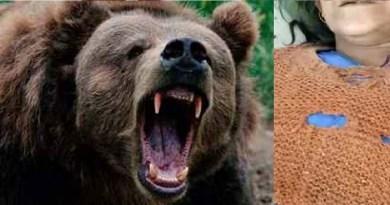 टिहरी गढ़वाल के प्रताप नगर विकासखंड में भालू का आतंक देखने को मिला है। कोरदी गांव में भालू ने मां-बेटे पर हमला कर दिया। इस दौरान दोनों घायल हो गए।