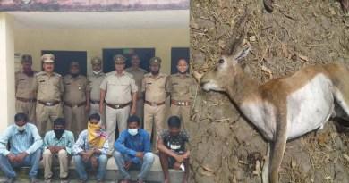 रुद्रपुर: हिरण के पांच शिकारी गिरफ्तार, दो अभी भी फरार, तलाश में जुटी पुलिस